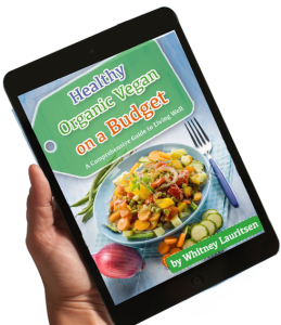 healthy organic vegan ebook blue new ipad