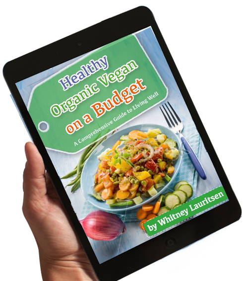Healthy organic vegan on a budget healthy organic vegan ebook blue new ipad fandeluxe Image collections