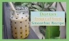 Durian Tropical Fruit Smoothie Recipe: Vegan MoFo