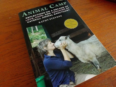 "Take a Trip to Catskill Animal Sanctuary with ""Animal Camp"""