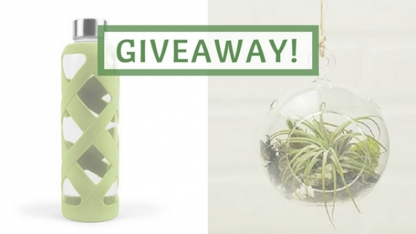 Giveaway: Beautiful Eco Home Goods from DSC